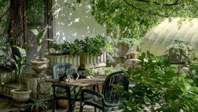 Ogród przystosowany do seniora